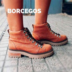BORCEGOS